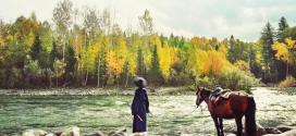 Đường xa mới biết ngựa hay, ở lâu mới hiểu thẳng ngay lòng người